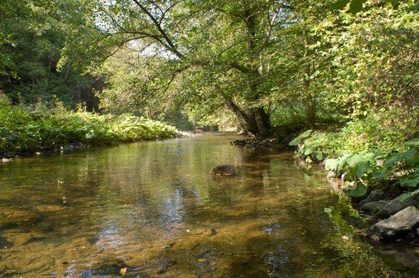 Hier steht ein Foto mit dem Titel: Wasser, Licht, ruhiges Fließen, Atmen: einfach sein. (Foto: H.-J. Schneider)
