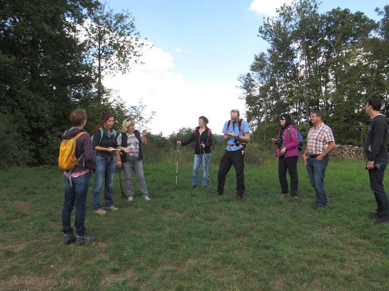 Hier steht ein Bild mit dem Titel: Zweite Station der Kräutertour: das Johanniskraut