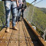 Hier steht ein Bild mit dem Titel: Brückenerstbegehung aus der Sicht eines Hundes (Foto: Britta Verhaag)