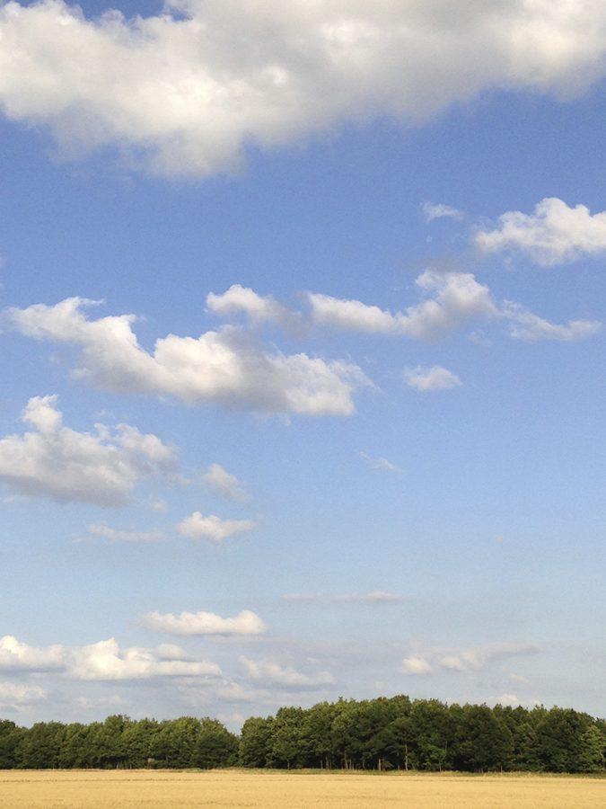 Hier steht ein Bild mit dem Titel: So sieht die Glessener Höhe bei Tageslicht aus (Foto: Hans-Joachim Schneider)