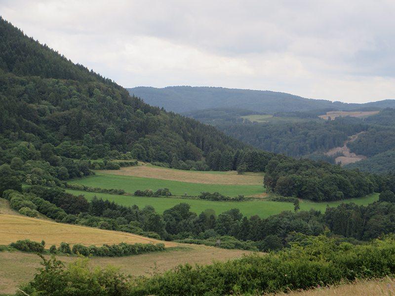 Weitblick über ein grünes Tal, waldbestandene Hänge: Die ganze Traumpfad-Vier-Berge-Tour überrascht immer wieder mit beeindruckenden Panaromen