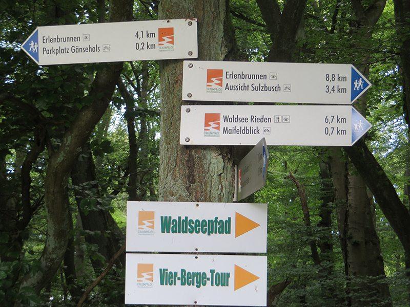 Unterhalb des Schmitzkopfes treffen sich gleich zwei Traumpfade: die Traumpfad-Vier-Berge-Tour und der Waldseepfad
