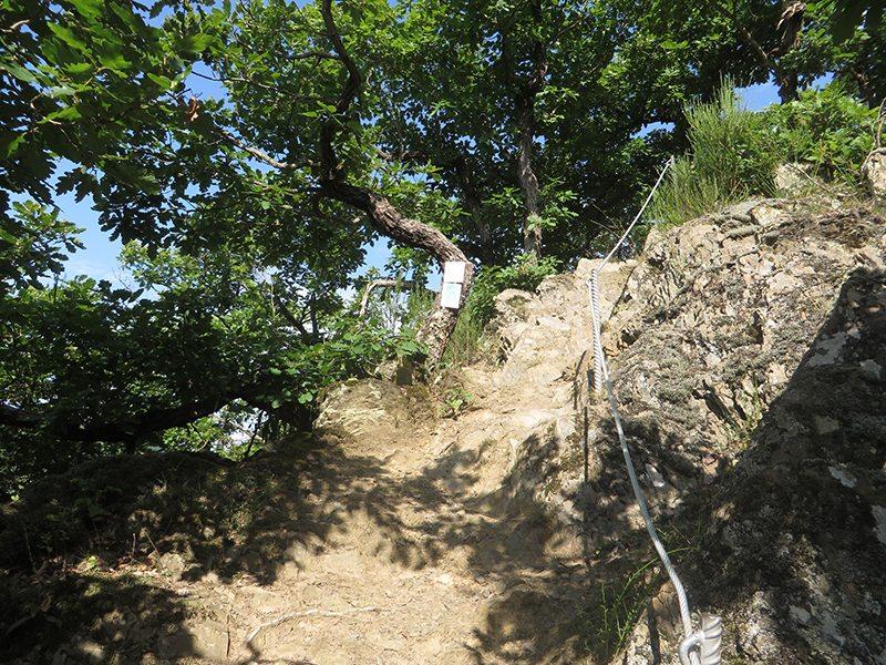 Der trockene Schieferuntergrund ist rutschig, eine Seilsicherung hilft (Foto: Hans-Joachim Schneider)