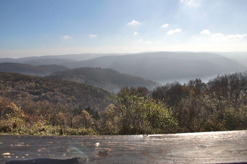 Hier steht ein Bild mit dem Titel: Panoramen vom Steinerberg, eines faszinierender als das andere (Foto: Norbert Schneider)