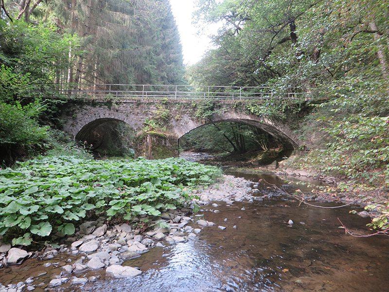 Hier steht ein Bild mit dem Titel: Die fette Brücke am Westerwaldsteig – die hat's mir angetan (Foto: Hans-Joachim Schneider)