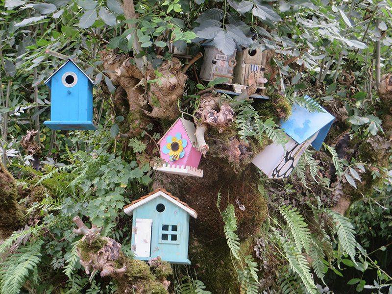 Bunte Vielfalt: Viele verschiedenfarbige Vogelhäuschen hängen in einem Baum beim Hotel Weißmühle