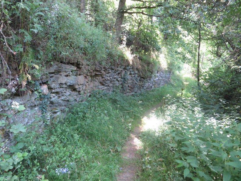 Ein Pfad im hellen Sonnenlicht. junges Grün spendet Schatten. Eine alte halbverfallene Steinmauer flankiert an dieser Stelle die schönste Ahrsteigetappe