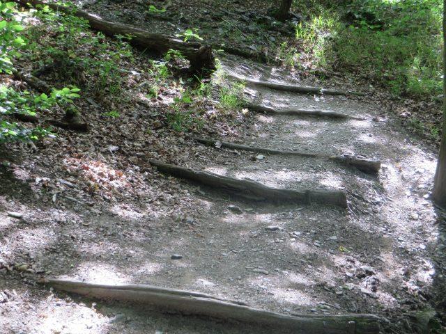 Unmittelbar hinter diesem Anstieg trifft die Variante über die Teufelsley wieder auf die markierte Variante der neuen Ahrsteig-Etappe 5