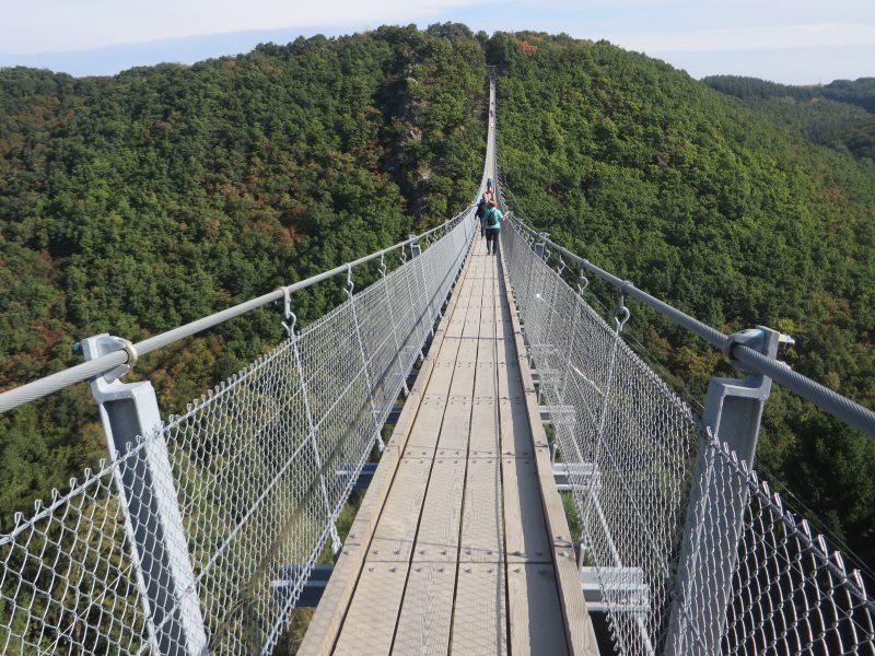 Geierlay-Hängebrücke, Hunsrück, Hängeseilbrücke, Geierlay, Eröffnung, Sonnenschein, Wandern, Saar-Hunsrück-Steig, Mörsdorf, Brückenschwankungen
