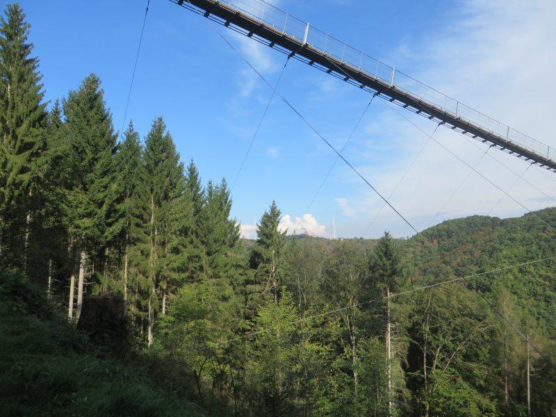 Die Geierlay-Hängebrücke einmal von unten gesehen. Mehrere Wanderwege sind vom Endpunkt der Brücke zu erreichen