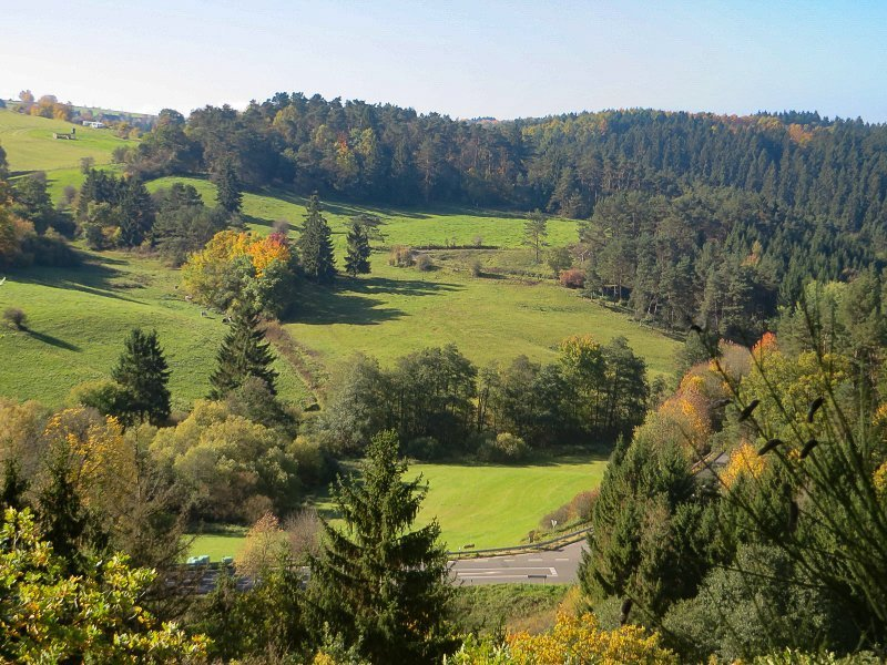 Blick über ein grünes Tal, durchsetzt mit Bäumen und Buschgruppen, auch das ist der AhrSteig blau