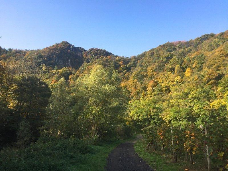 blauer Himmel, Hügel. Bäume in Herbstfarben, ein malerischer Ausklang