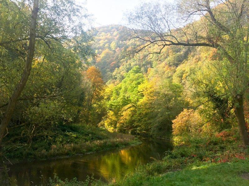 Der Fluss im Vordergrund, dahinter bewaldete Hügel. das alles in Herbstfarben