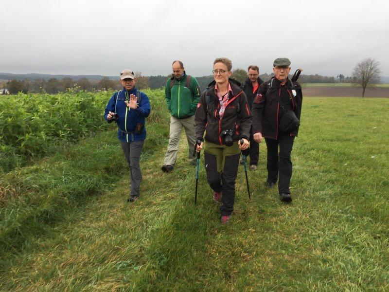 Die Wanderblogger-Tour führte von Gillenfeld über die offene Flur zum Maar.