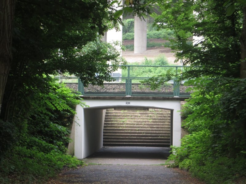Weg, Wald, Straße, Rheinburgenweg. Nun noch hindurch durch die Straßenunterführung