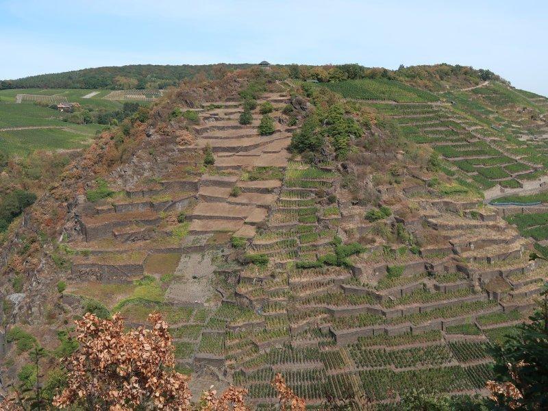 Weinberge und stillgelegte Terrassen gliedern den gegenüberliegenden Hang
