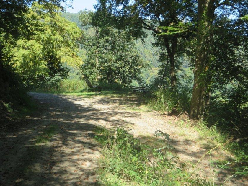 Das reizvolle an dieser Etappe ist der stete Wechsel zwischen Wald und offenem Grün.