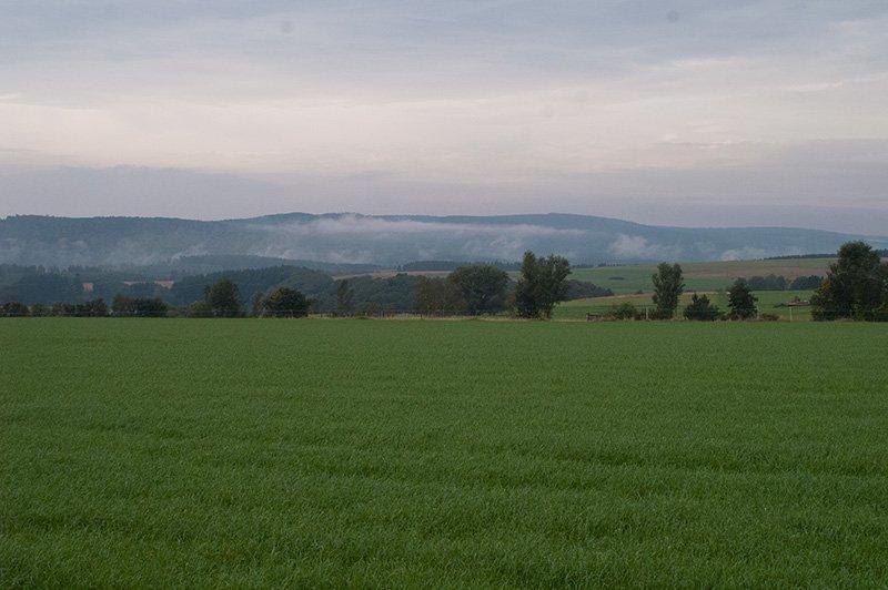 Blick über grüne Felder, im Hintergrund der Horizont mit bewaltedeten Kuppen, dort liegt der Saar-Hunsrück-Steig