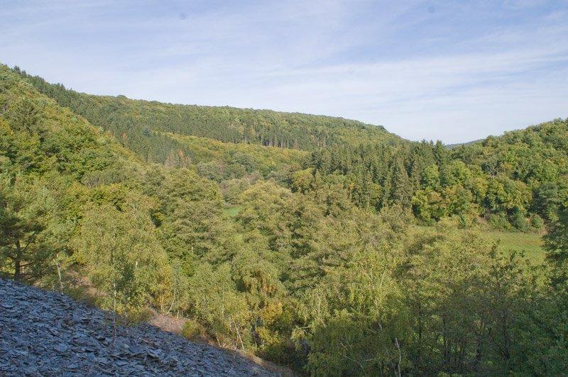 Vom Wanderweg auf der Traumschleife Hahnenbachtal schweift der Blick über Schieferhalden, Wald und sattes Grün – ein Feiertag für die Augen und für die Seele