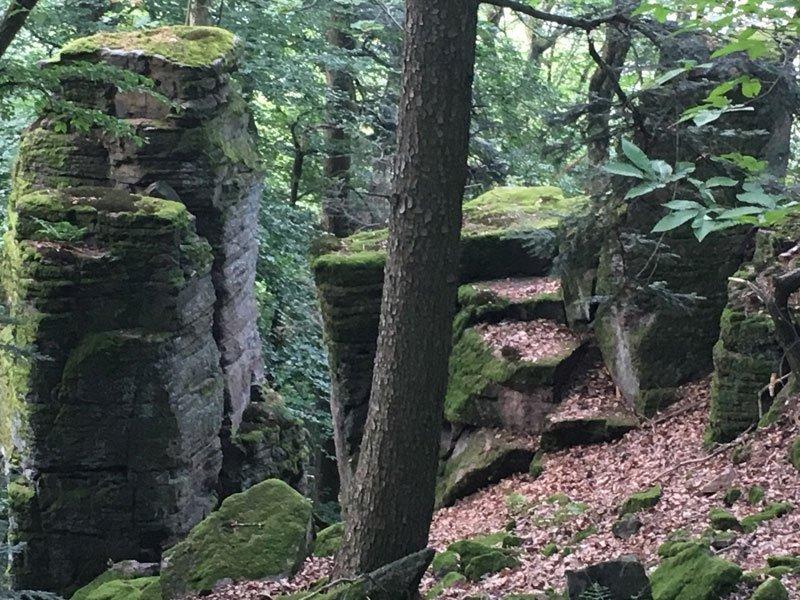 Einzelne Felsklippe, durch Erosion aus dem umliegenden Gelände herausgearbeitet. Sehr schön sind die feinen waagerechten Schichlten zu erkennen.