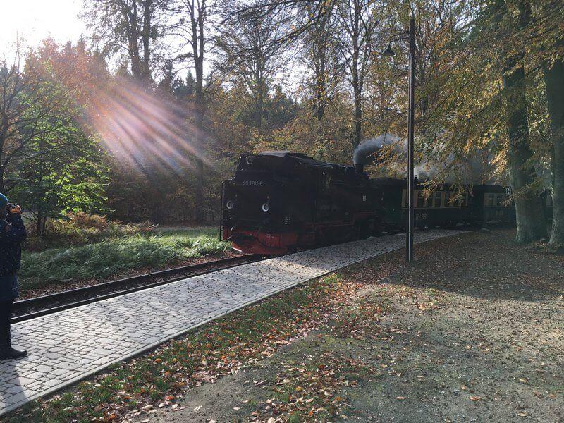 Sie ist eine berühmte Eisenbahn: Der Rasende Roland mit seiner Dampflokomotive