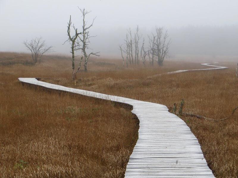 Gottseidank gibt es einen neuen Weg, der direkt neben dem Hindernis abzweigt