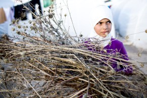 A young girl collects twigs for a fire so her family can stay warm.