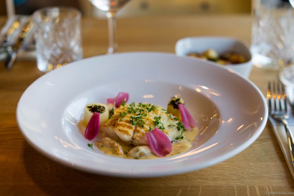 Hake fish with pickled onions, confit leek, mussels, and a mussel beurre blanc.