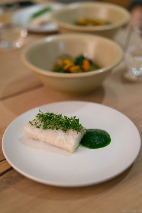 Pike perch, cress and a sauce of Romano salad