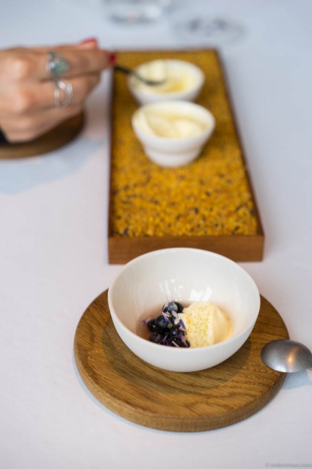 Ice cream of beeswax, pollen & honey with blueberries