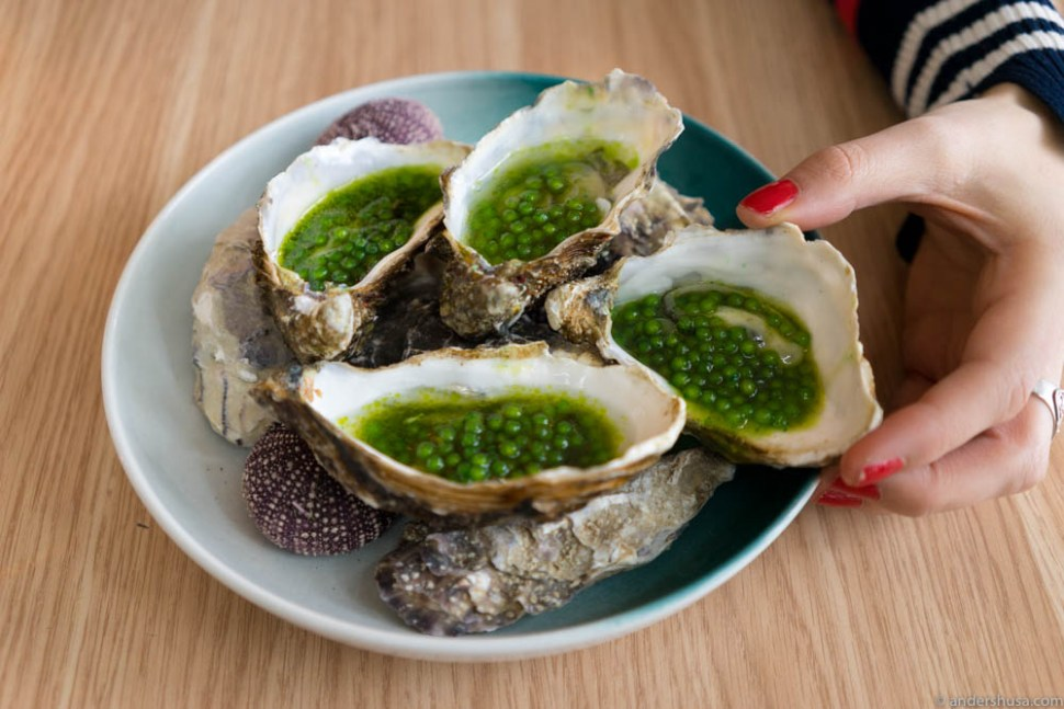 Oysters with tapioca pearls, jalapenos, green tabasco, green tea & ponzu.