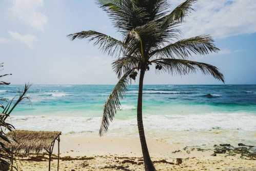 The Best Restaurant Guide to Tulum