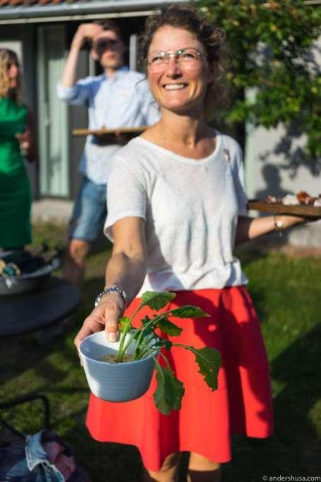 Turnips in a flowerpot