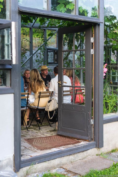 Social dinner in a greenhouse