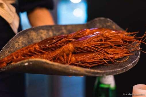 Algarve Scarlet shrimps