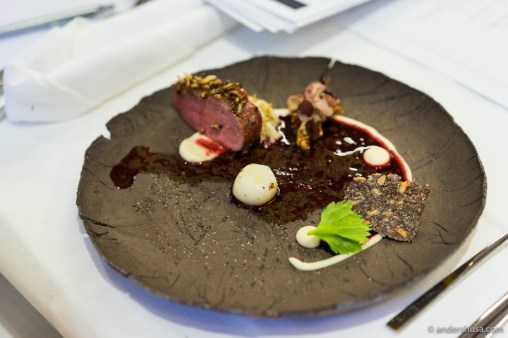 Duck with turnip, pine, and fermented celeriac by Tomasz Rochon