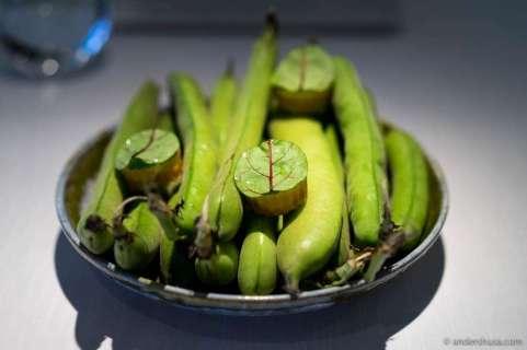 Broad beans & sorrel in a croustade