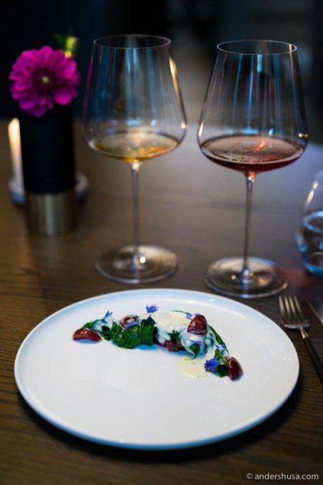 Grilled red beets and tartare of Dexter cattle from Korsvold, with chard cooked in ox fat, served with a creamy sauce and cherries