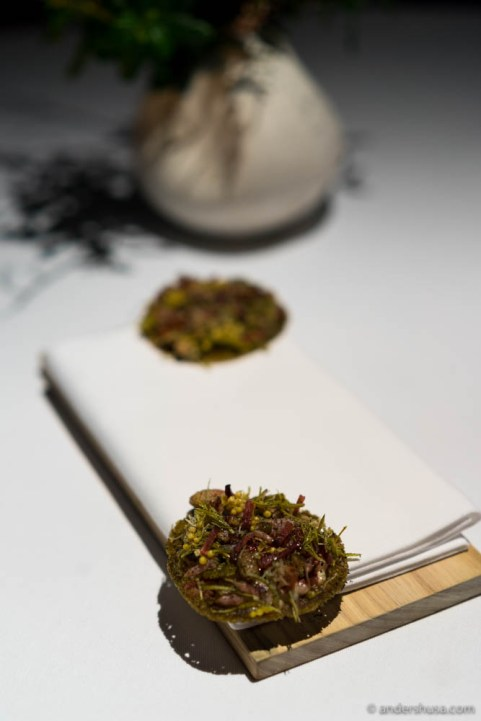 Sea weed cracker with mahogny clam and preserved Bornholm by Nicolai Nørregaard