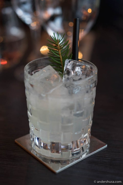 Spruce Shoots – Norwegian dry gin, elderflower liqueur, lime, and spruce shoots syrup.
