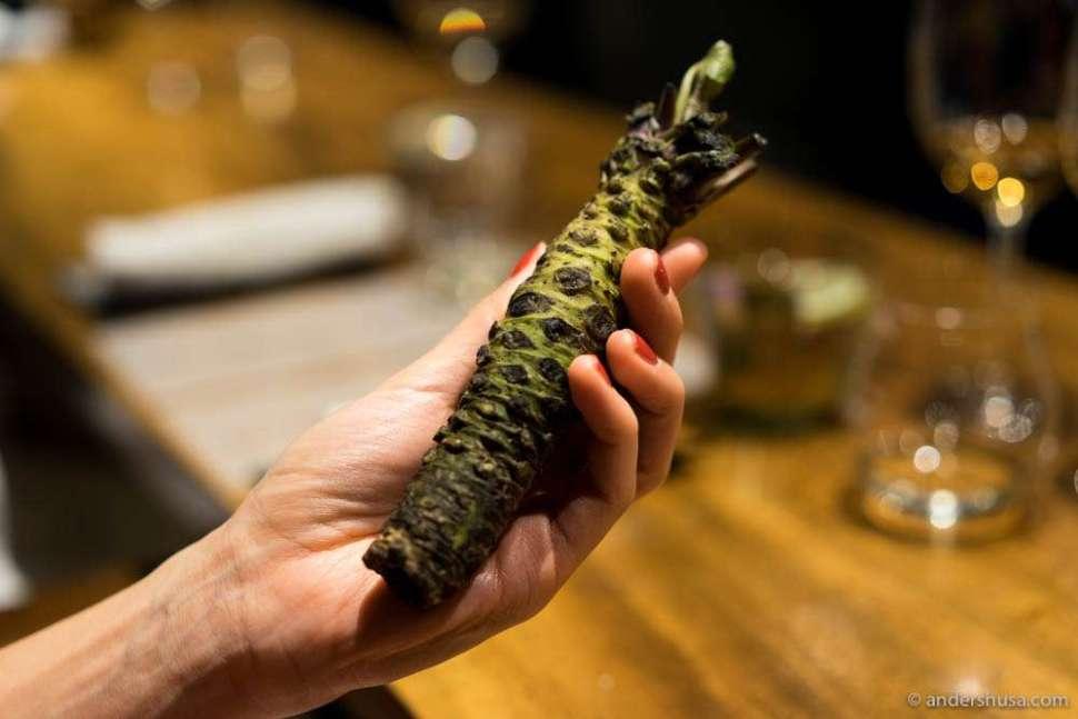 Real wasabi root