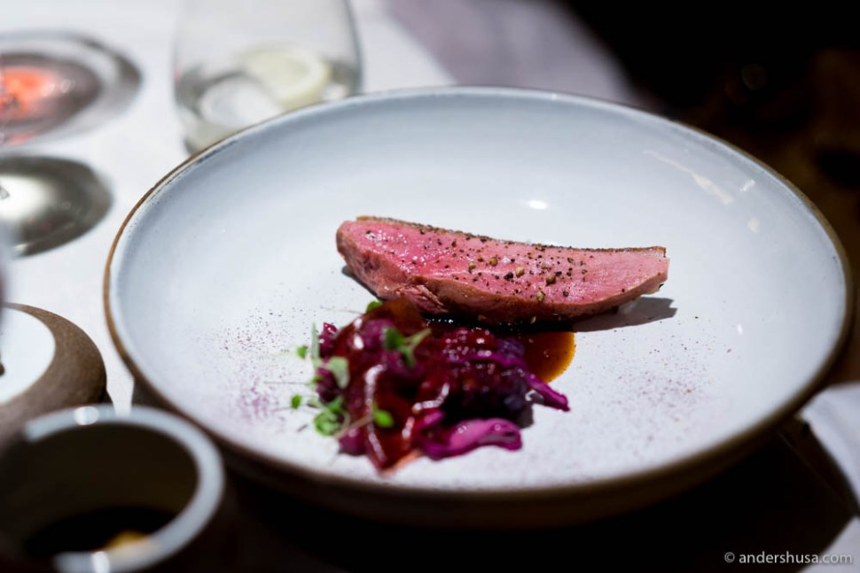 Hungarian duck aged for 7 days and smoked in hay, red cabbage & cranberries
