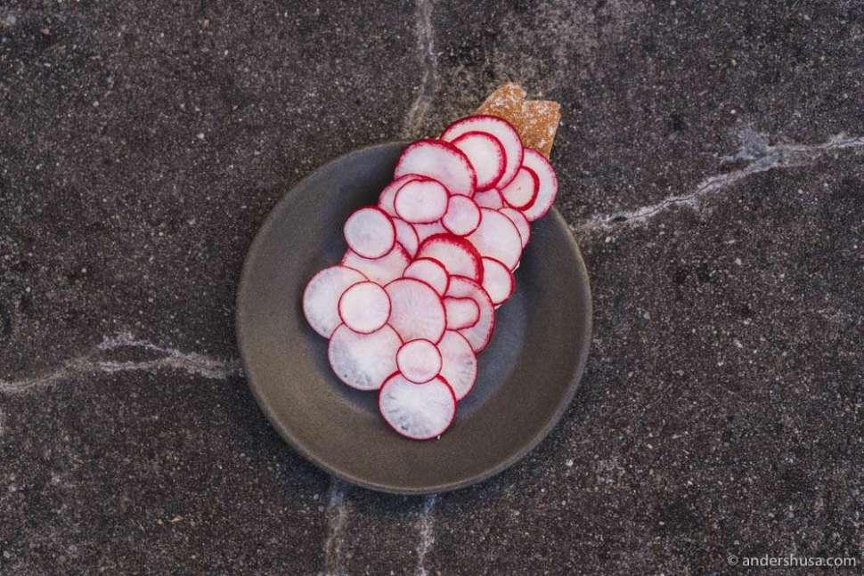 Spelt cracker, strained yogurt & sliced raw radish