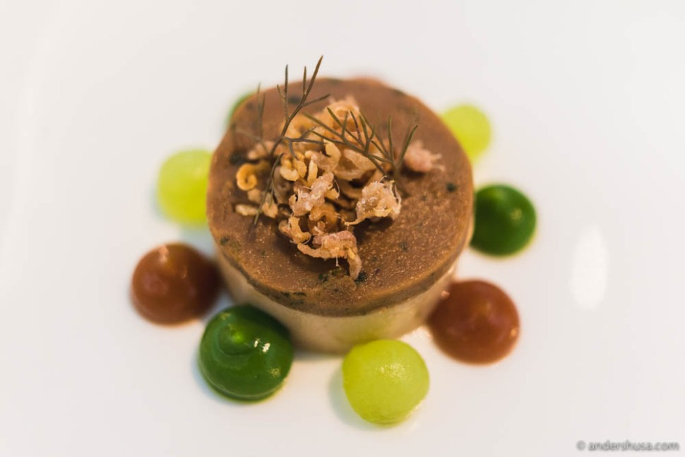 Duck liver terrine, pickled cucumber, ginger and leek cream, topped with crispy duck skin