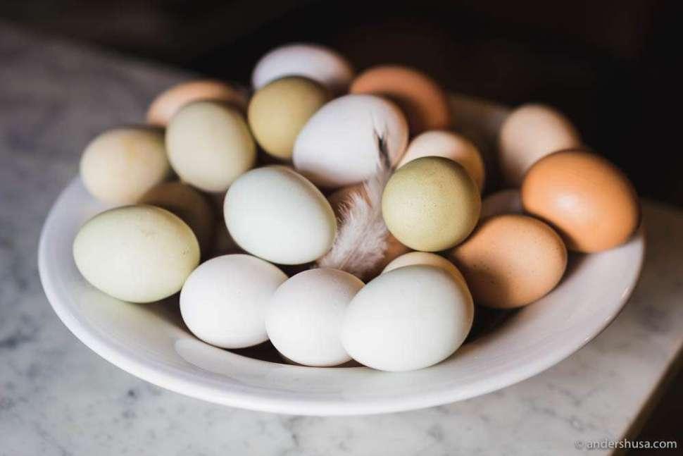 Eggs from Herfra gård