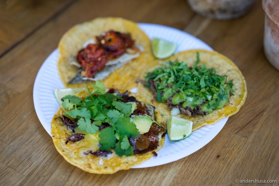 A trio of authentic Mexican tacos!