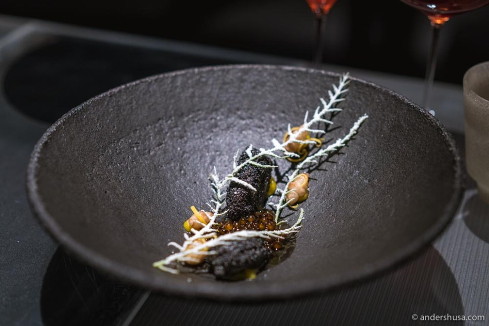 British Columbia honey mussels, coated in poppyseed, with Chinese artichoke, and tapioca in vegetable juice.