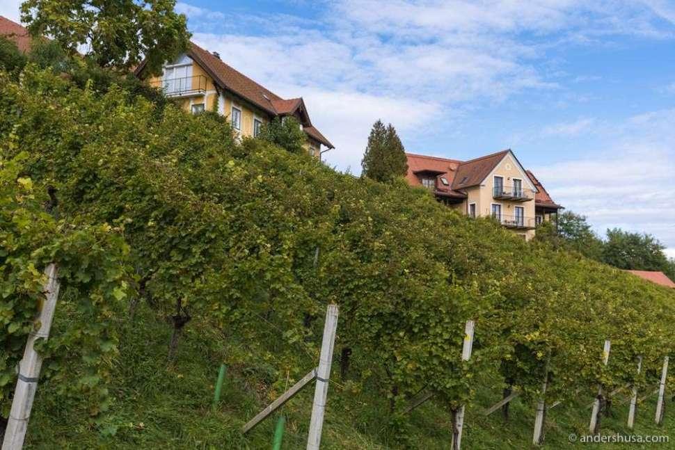 Southern Styria (Südsteiermark) is known as the Tuscany of Austria.