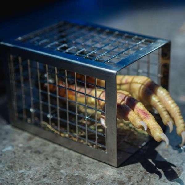 """Cage-free"" chicken leg with garlic ginger teriyaki and crispy skin."