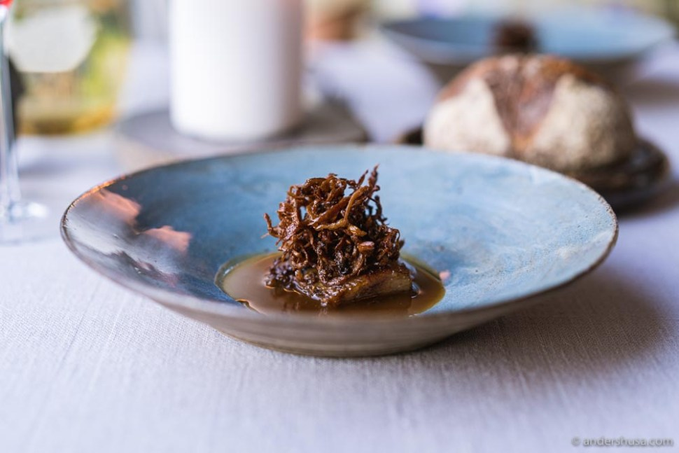 Brown sugar cured pork throat with oyster mushrooms and a pig foot and fermented mushroom sauce.